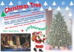 Christmas Tree 2016 snapshot